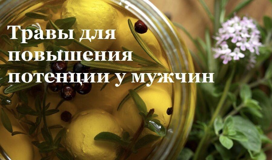 travy_dlya_potencii